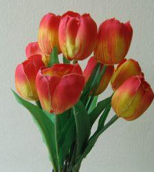 Tulipáncsokor 9 virággal,  narancs