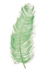 Strucctoll 55-60 cm almazöld