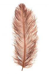 Strucctoll 55-60 cm barna