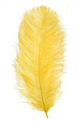 Strucctoll 55-60 cm citromsárga
