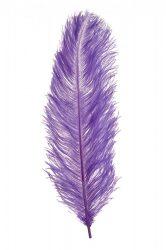 Strucctoll 55-60 cm lila