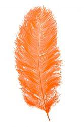 Strucctoll 55-60 cm narancs