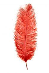 Strucctoll 55-60 cm piros
