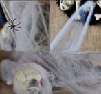 Pókháló 3 pókkal
