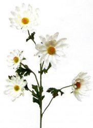 Margaréta 5 virággal (mű)