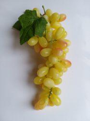 Hosszúkás szemű  sárga  szőlő (85sz)