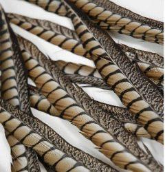 Fácántoll 30-35 cm