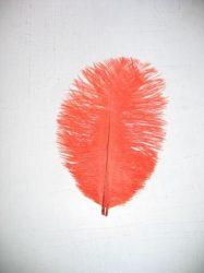 Strucctoll 15 cm narancs