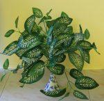 Cserepes sávos-zöld növény, 30 cm