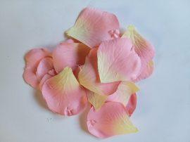 Nagy rózsaszirom barack szín 40 db-os csomag