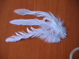 Kakasfarok toll 15 cm fehér