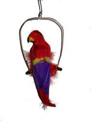 Papagáj a hintában