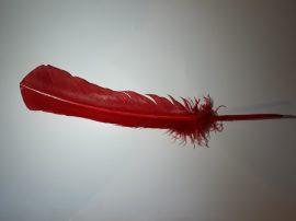 Pulykatoll 32-34 cm piros színben