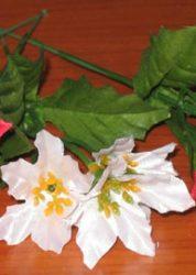 Mikulásvirág kitûzõ 3 virággal  (mű)