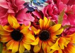 Műnövények és -virágok